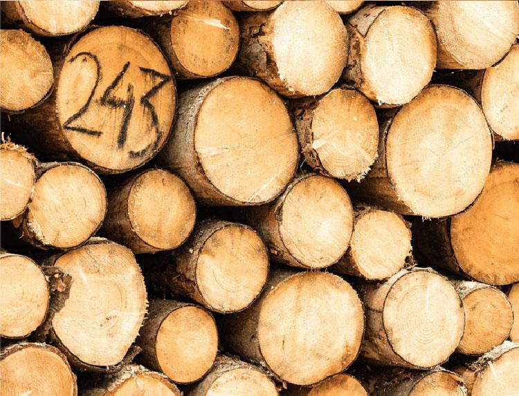 江戸川区の注文住宅工務店 木材へのこだわりの写真