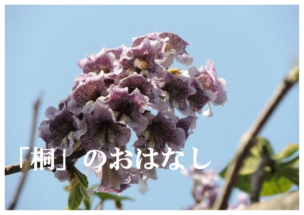フル ページ写真-28