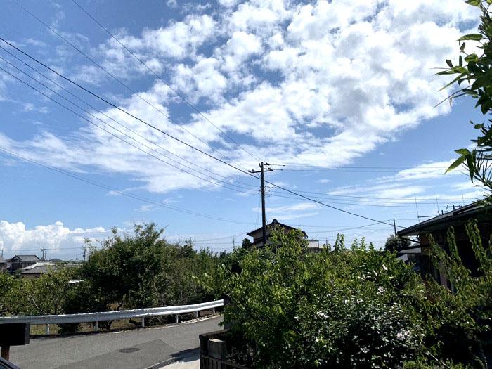 江戸川区で注文住宅を建てるニットー住宅の夏空と自然